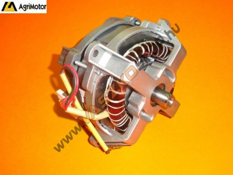 Villanymotor Agrimotor 1000W (fűnyíró)